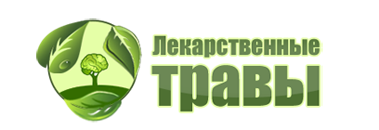 Лекарственные растения и травы: логотип сайта medicinalplants.ru в виде дерева-мозга